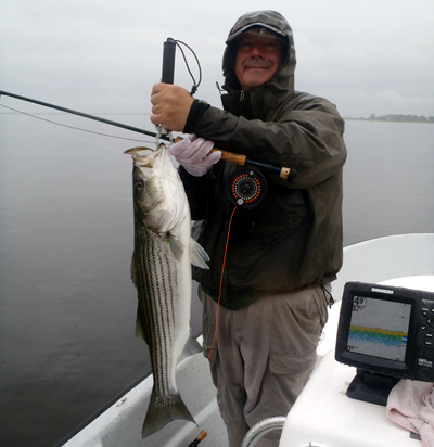 Massachusetts fishing charters salt water fishing reports for Capt al fishing report